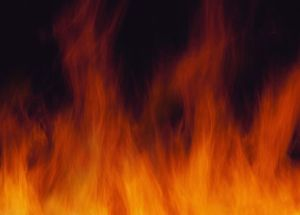 love flames cut