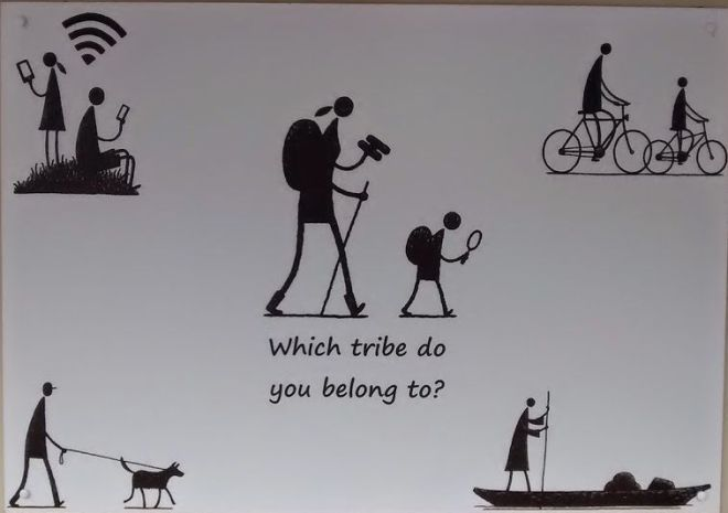 Which tribe do you belong to_cut